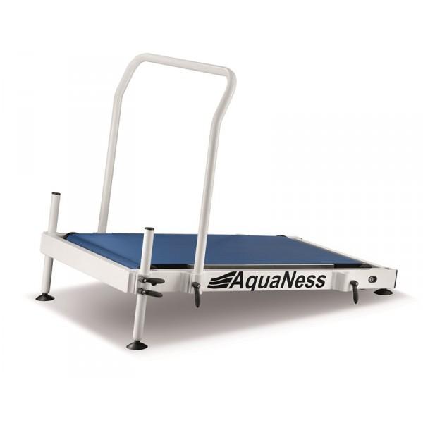 Aquaness AquaTreadmill T1
